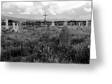 The Old Cemetery At Galisteo Greeting Card