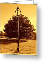 The Old Lantern In The Park Greeting Card