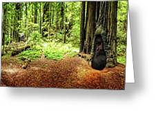 The Old Man In The Forest Greeting Card
