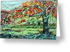 The Old Maple Tree Greeting Card