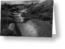 The Old Stone Track Monochrome Landscape Greeting Card