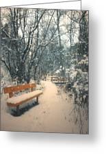 The Orange Bench Greeting Card by Tara Turner
