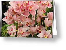 The Orchid Garden Greeting Card