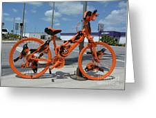 The Orioles Bicycle Greeting Card
