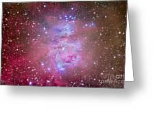The Orion Nebula Region Greeting Card