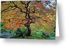 The Other Japanese Maple Tree In Autumn Greeting Card
