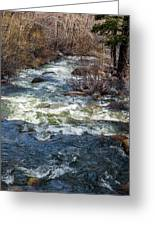 The Other Side Of The River Greeting Card