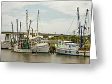 The Paddler Tybee Island Shrimp Boats Greeting Card