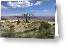 The Painted Desert Of Utah 2 Greeting Card