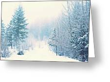 The Pale Kiss Of Winter Greeting Card