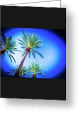 The Palms Of Scottsdale  Greeting Card