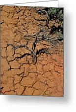 The Parched Earth Greeting Card