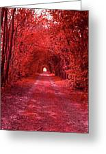 The Path 2 Greeting Card