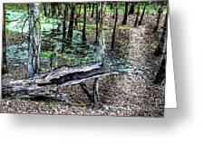The Path By The Log Greeting Card