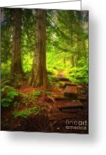 The Path Through The Forest Greeting Card