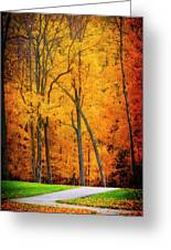 The Path To Autumn Greeting Card