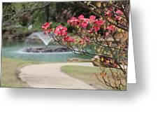 The Path To The Fountain Greeting Card