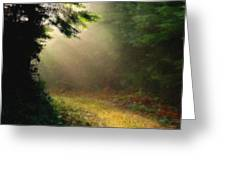 The Path Greeting Card