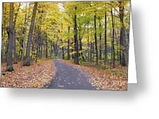 The Pathway To Fall Greeting Card