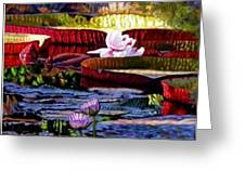 The Patterns Of Beauty Greeting Card by John Lautermilch