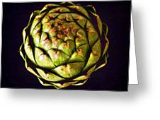 The Patterns Of The Artichoke Greeting Card