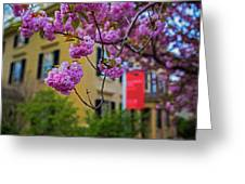 The Peabody Essex Museum At Spring Salem Ma Greeting Card