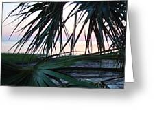 The Peeking Palms Greeting Card