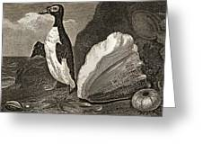 The Penguin With The Conc And Other Greeting Card