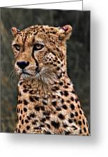 The Pensive Cheetah Greeting Card