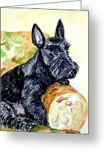 The Perfect Guest - Scottish Terrier Greeting Card