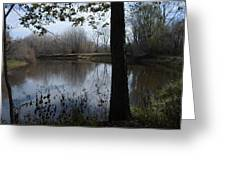 The Pine River Greeting Card
