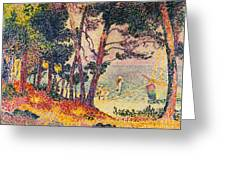 The Pine Wood, Provence Greeting Card