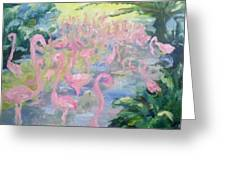 The Pink Pond Of Flamingos Greeting Card