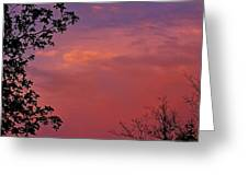 The Pink Sky Greeting Card