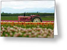 The Pink Tractor Greeting Card