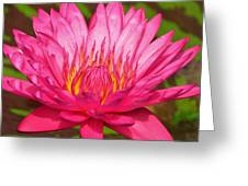 The Pinkest Of Pinks Greeting Card by Lori Frisch