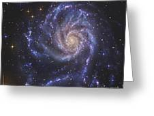 The Pinwheel Galaxy, Also Known As Ngc Greeting Card