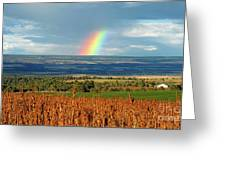 The Pleasant View Rainbow Greeting Card
