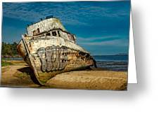 The Point Reyes Beached Greeting Card