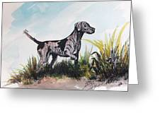 The Pointer Greeting Card