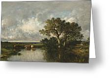 The Pond With Oaks Greeting Card
