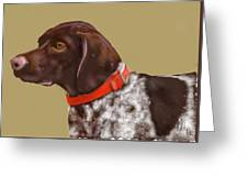 The Pooch With A Red Collar Greeting Card