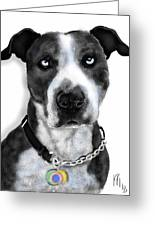 The Pooch With Blue Eyes Greeting Card