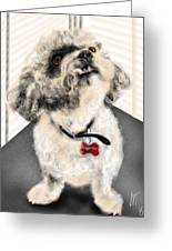 The Pooch With The Crooked Tooth Greeting Card