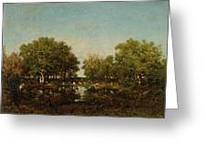 The Pool, Memory Of The Forest Of Chambord Greeting Card