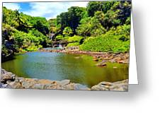 The Pools Of Ohe'o Greeting Card