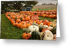 The Pumpkin Farm One Greeting Card