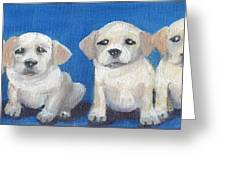 The Pups 2 Greeting Card