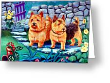 The Purple Gate - Norwich Terrier Greeting Card by Lyn Cook