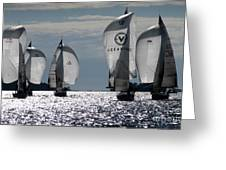 Sails Up - The Race Is On Greeting Card
